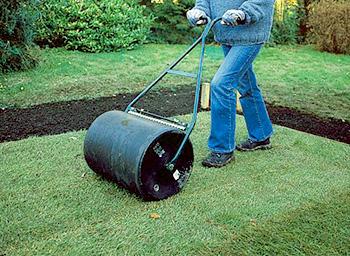 Прикатывание рулонного газона