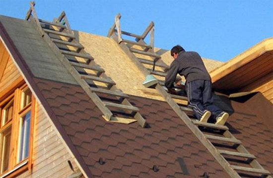 Лестница для крыши дома